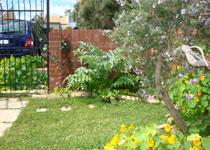 Artists' Residence back garden